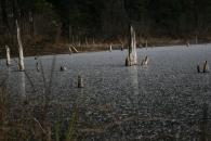 Icy lake